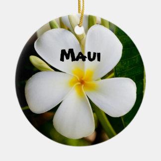Ornement Rond En Céramique Maui spectaculaire