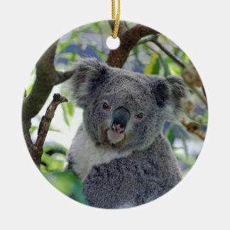 Ornement Rond En Céramique Ours de koala dans un arbre