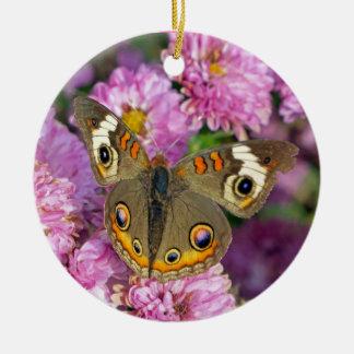 Ornement Rond En Céramique Papillon commun de maronnier américain