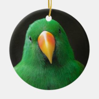 Ornement Rond En Céramique Perroquet vert