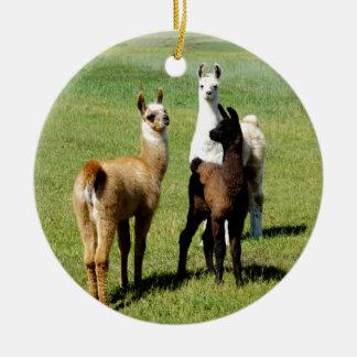 Ornement Rond En Céramique Petit groupe de lama de bébé