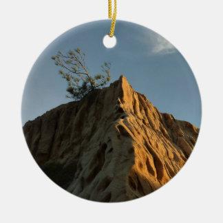 Ornement Rond En Céramique Pin de Torrey Scraggly à la côte de la Californie