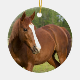 Ornement Rond En Céramique Profil latéral de Brown de cheval Arabe dans le