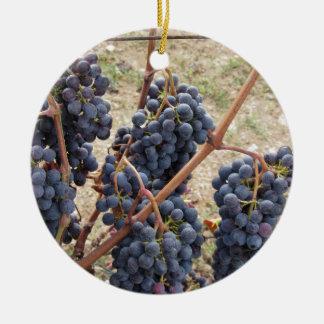 Ornement Rond En Céramique Raisins rouges sur la vigne. La Toscane, Italie