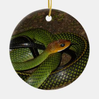 Ornement Rond En Céramique Ratsnake Noir-mis en marge ou serpent de rat vert
