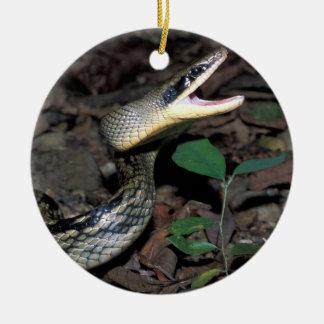 Ornement Rond En Céramique Serpent de rat de beauté