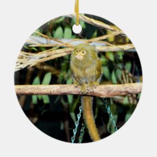 Ornement Rond En Céramique Singe d'ouistiti se reposant sur une branche,