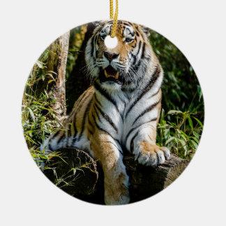Ornement Rond En Céramique Tigre de locations à Muenster