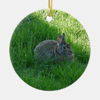 Ornement Rond En Céramique Un lapin louche