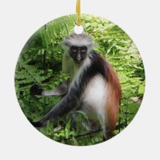 Ornement rouge de singe de Colobus de Zanzibar