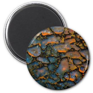 Os de dinosaure Petrified orange Aimant