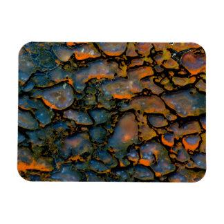 Os de dinosaure Petrified orange Magnet Flexible