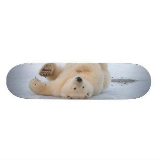 ours blanc, maritimus d'Ursus, petit animal roulan Skateboard Customisable