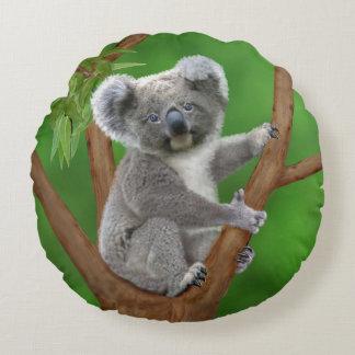 Ours de koala aux yeux bleus de bébé coussins ronds