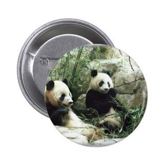 Ours panda mangeant et jouant badge rond 5 cm
