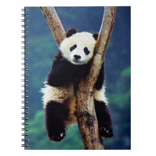 Ours panda mignon carnet à spirale