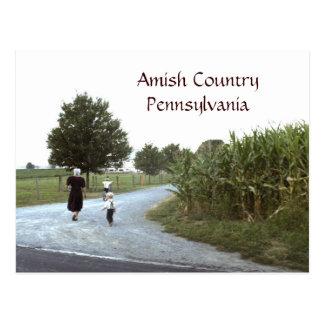 PA amish de la Pennsylvanie de pays Carte Postale