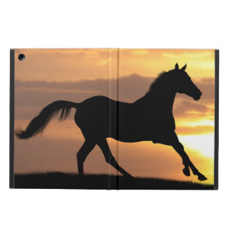 Paard in Zonsondergang iPad Air Hoesje