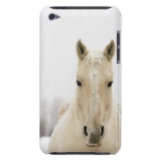 Paard met sneeuw op hoofd Case-Mate iPod touch hoesje