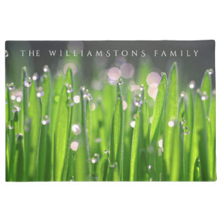 Paillasson Wheatgrass Bedewed dans la lumière de matin