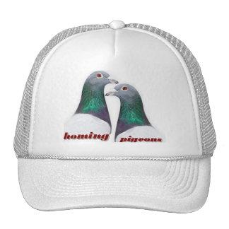 Paire de pigeons voyageur casquettes de camionneur