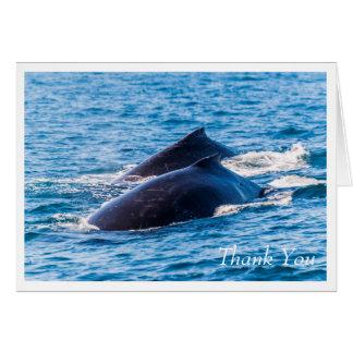 Paires de carte de voeux de baleines de bosse