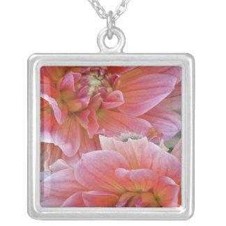 Paires de fleurs de dahlia, espèces de dahlia, collier