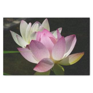 Paires de fleurs de Lotus II Papier Mousseline