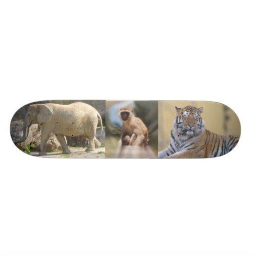 """Panneau de skat «animaux sauvages """" skateboards cutomisables"""