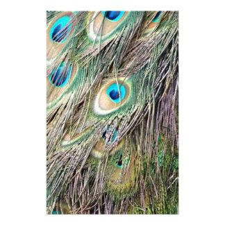 Papeterie Beaux yeux de plume de paon avec la nouvelle
