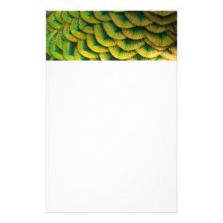 Papeterie Conception colorée de nature des plumes II de paon