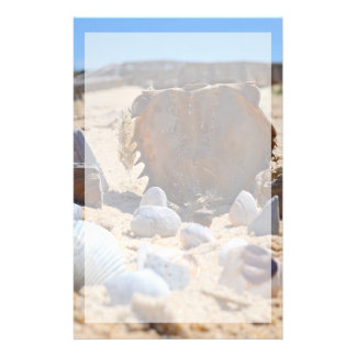 Papeterie Coquillages sur la plage par Shirley Taylor
