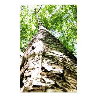Papeterie Écorce d'arbre
