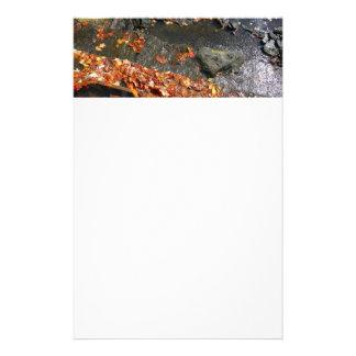 Papeterie Feuille de chute dans la photographie d'automne de