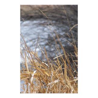 Papeterie Herbes de rivière