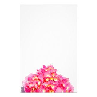 Papeterie Hortensia rose