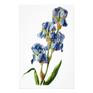 Papeterie Iris bleu tiré de la nature par Gerard van
