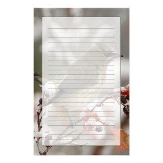 Papeterie Jaseur de cèdre adulte sur l'aubépine avec la