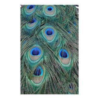 Papeterie La plume naturelle de paon observe coloré