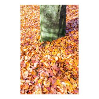 Papeterie La terre autour du tronc d'arbre couvert de congé