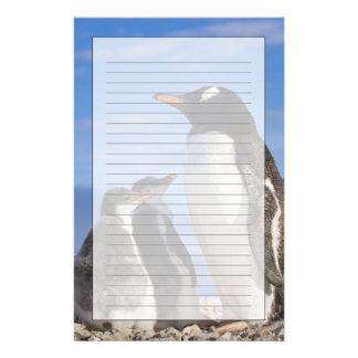 Papeterie L'Antarctique, crique de Neko (port). Pingouin 2