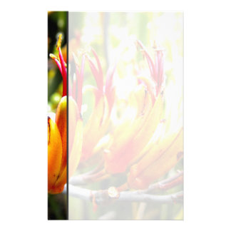 Papeterie Lin fleurissant de la Nouvelle Zélande