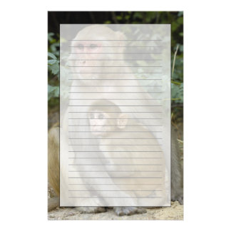 Papeterie Mère et bébé de mulatta de Macaca de Macaques de