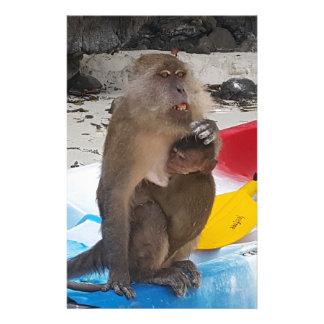 Papeterie Mère et bébé de singe