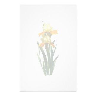 Papeterie Miel d'iris vitré
