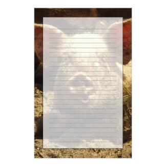 Papeterie MOIS : Chambre Genevieve, ferme de porc