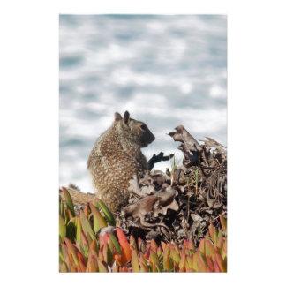Papeterie Petit écureuil