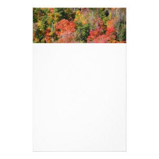 Papeterie Photographie colorée de nature d'automne de
