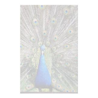 Papeterie Plein plumage de paon bleu