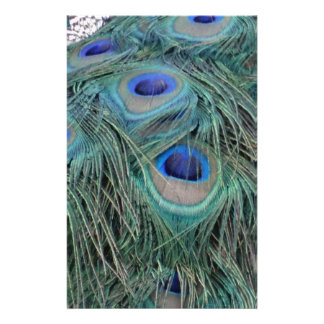 Papeterie Plumes de paon avec des taches d'oeil